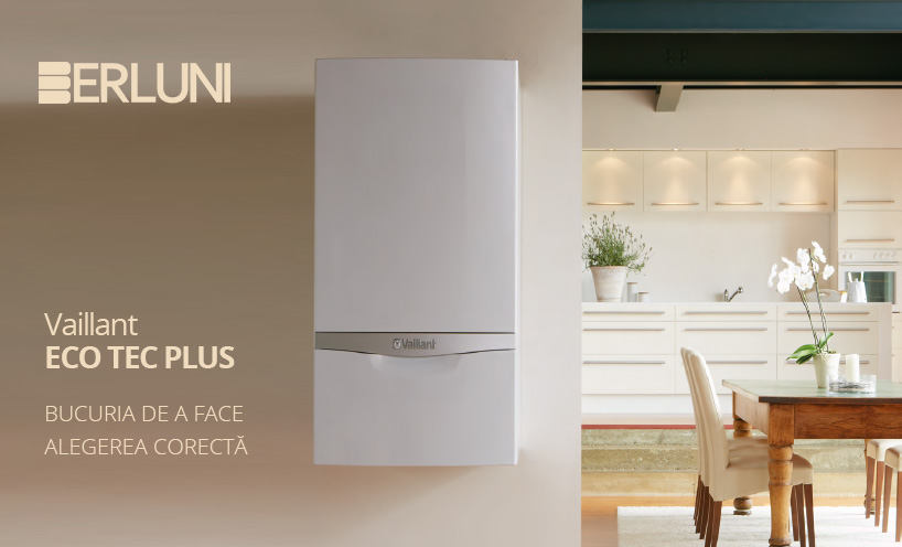 Vaillant eco tec plus si berluni