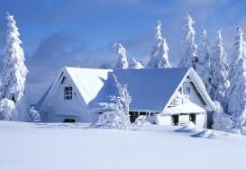 Argumente pro si contra achizitionarii unei centrale termice pe lemne