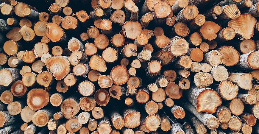 Centrala termica pe lemne - cum se calculeaza un metru ster de lemn
